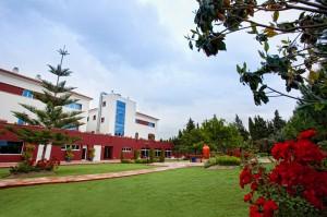 8-Jardín-2011