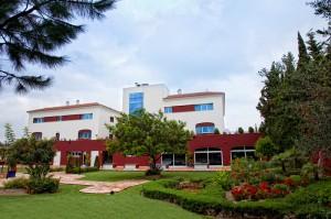 9-Jardín-2011